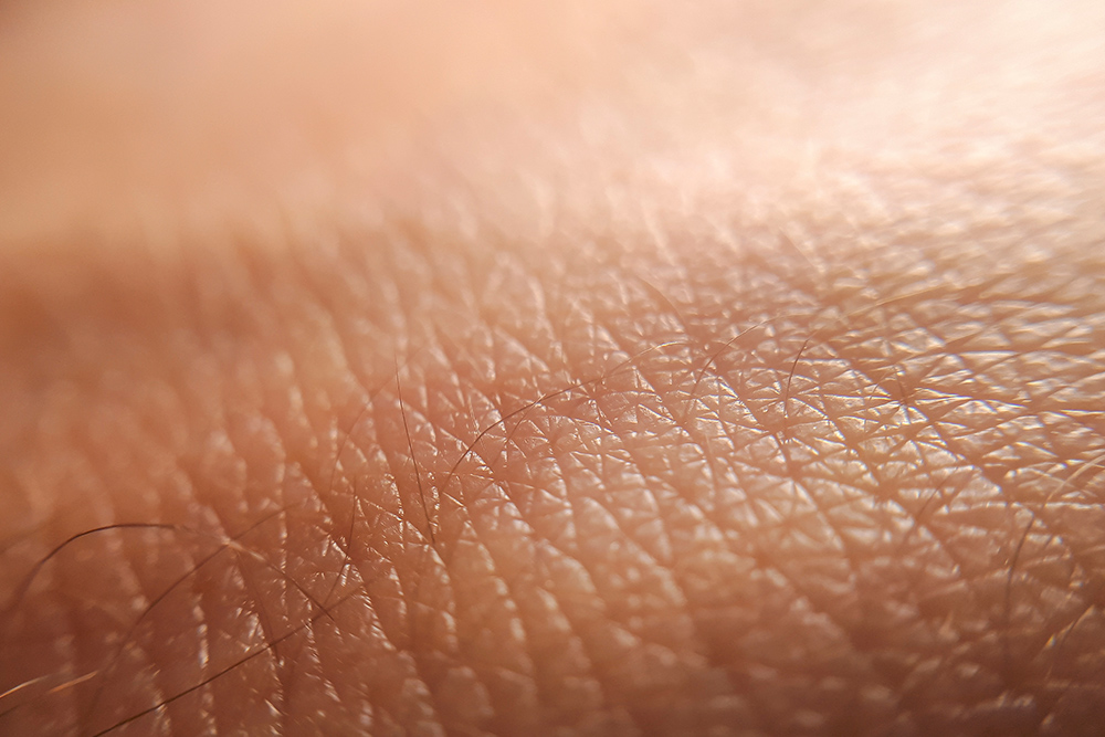 Amazing Skin Facts